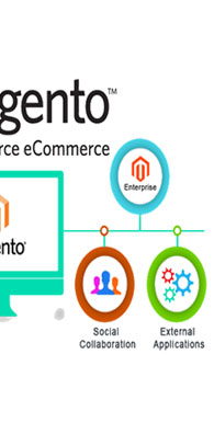 Magento powers over 2 Lakh E-commerce stores around the world - a figure that rises ever day. The top choice for one in every four online retailers, its advanced features and exceptional versatility make Magento Ecommerce Development, the most powerful enterprise class E-commerce platform in existence.  With Magento Ecommerce Development, everything from the storefront to the website's layout can be  customized enabling businesses to extend the boundaries of innovation to create incredible  shopping experiences. Simply put, Magneto is E-commerce at is best!  At Webinfosys, we believe that your business deserves more than a prepackaged solution. Our  highly talented and experienced team of Magento developers pays extreme attention to detail and  delivers customized Magento Ecommerce Development solutions that align with your business' unique  needs. We combine Magento Ecommerce Development out-of-the-box functionality with ingenuity to  create complete Magento-based E-commerce stores that are built to drive sales and conversions.   Need we say more?  What Makes Magento a Winner? The world's most-versatile and high-performance E-commerce platform It is loaded with features and can be tweaked to align with business needs  Combines MySQL Database and PHP script to deliver outstanding functionality Entry-attribute-value (or EAV) model allows extensive flexibility Excellent multi-store functionality with single administrative panel As an Open Source platform, it provides unlimited scope for further growth and improvement Excellent multi-store functionality with single administrative panel Can help businesses scale their E-commerce store to meet future commerce needs