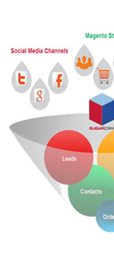 Get Magento Web Development Services